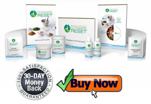 transform your health with the beachbody ultimate reset