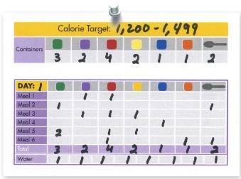 21 Day Fix Tally Sheet Example