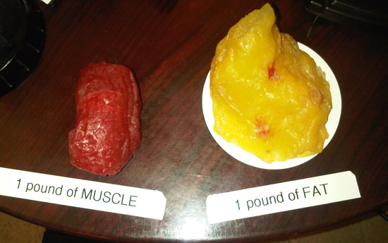 One pound of fat takes up more space than a pound of lean muscle!
